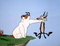 GA_Sheepdog's Avatar